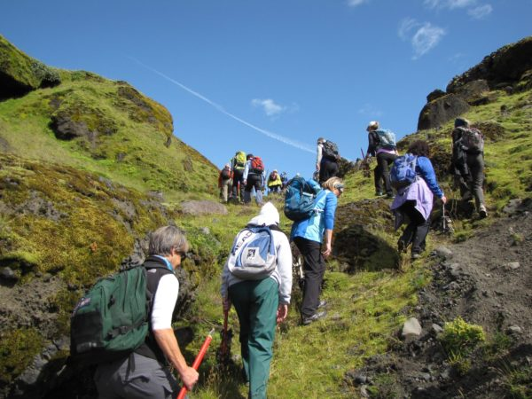 Hike off the beaten track with your local guide on the Golden Circle