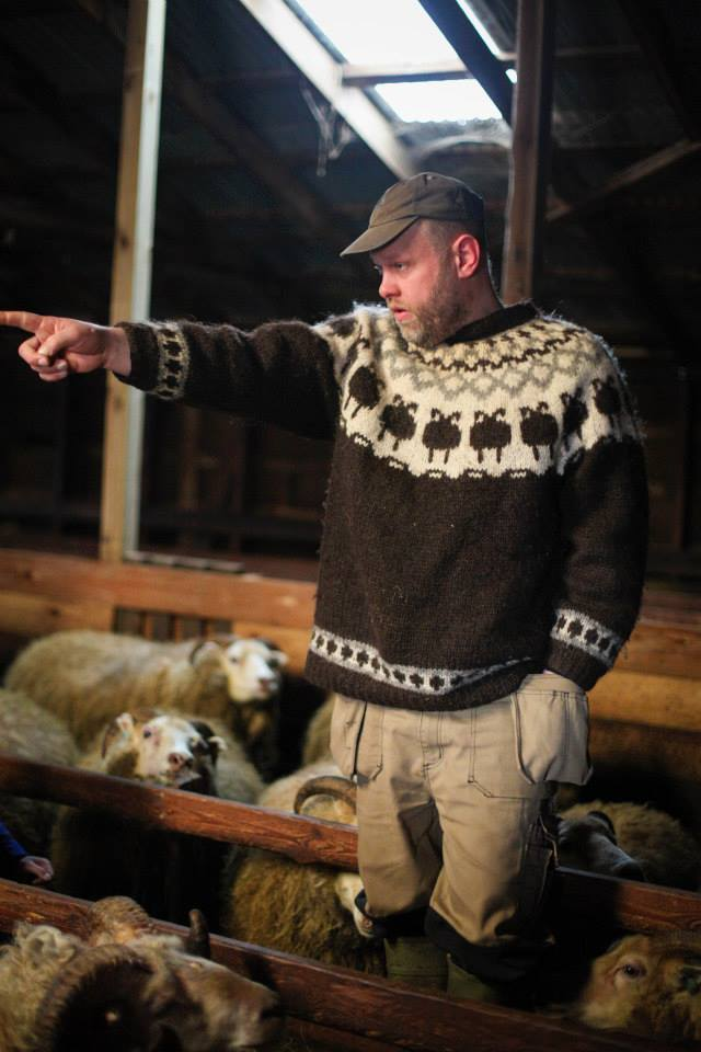 Students meet with small scale sheep- and dairy farmers and learn about local food production, the Icelandic Skyr and the uniquness of the Icelandic wool.