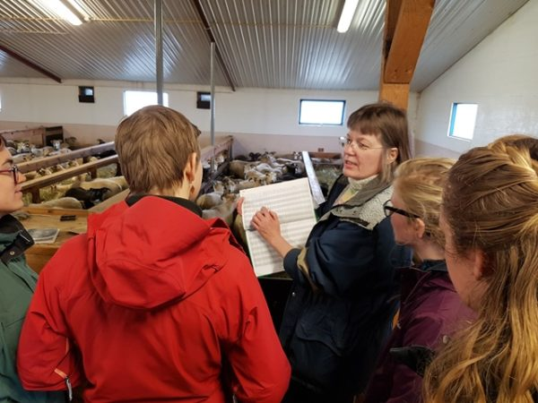 Students on study abroad program on sustainability in Iceland visiting a local farmer in Iceland