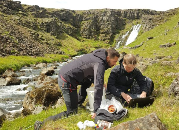 Students on Sustainable South Iceland study abroad program gaining hands on experience and exploring the magnificent landscapes of Iceland