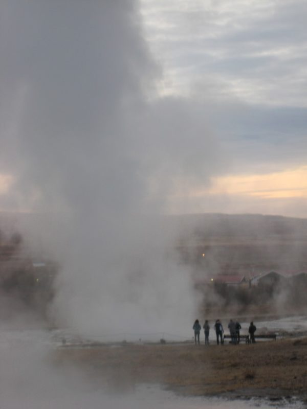 Geysir Students on study abroad program on sustainability in Iceland visiting a local farmer in Iceland