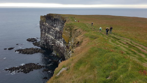 Hiking Latrabjarg puffin cliffs in Westfjords in Iceland