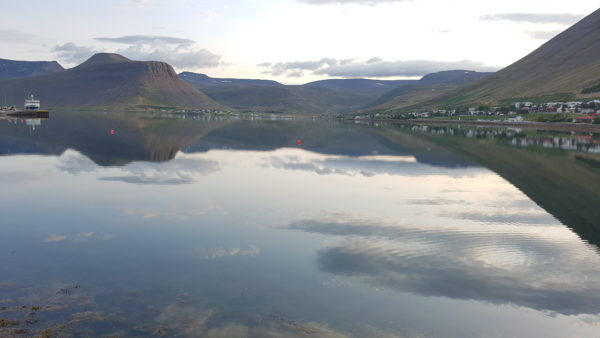 Unique experiences in Westfjords of Iceland