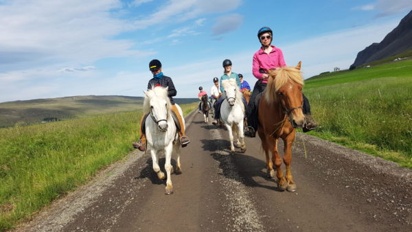 A group of women horseback riding on all womens tour and solo female travel in Iceland