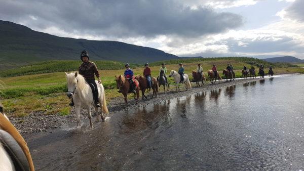 Horsebackk riding in Iceland