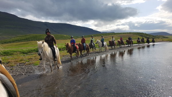 Empowering woment trip on Horseback riding in Iceland