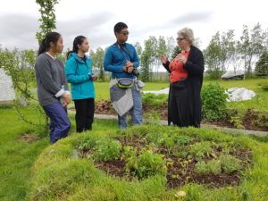 Students on study abroad in Iceland visiting an organic farmer in Iceland