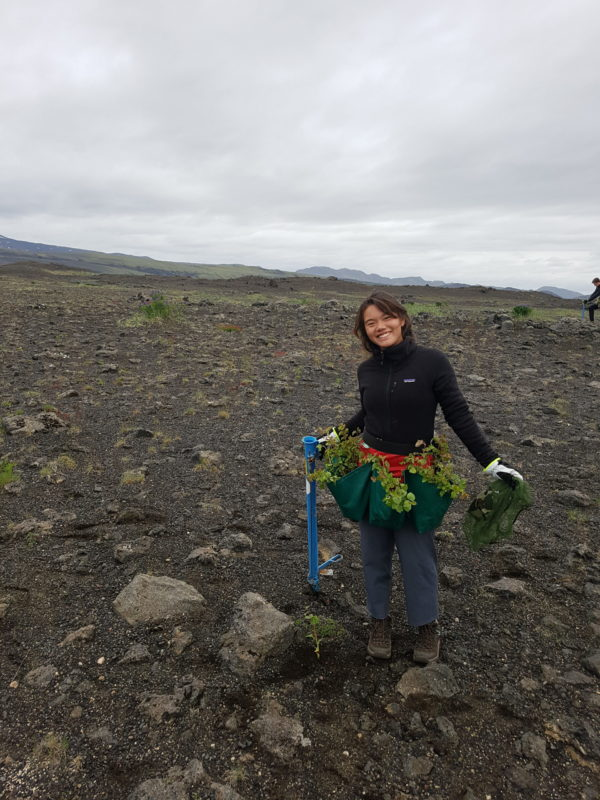 Student on study abroad in Iceland offsetting their carbon in Iceland